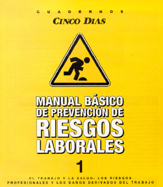 Manual de Prevencion de Riesgos
