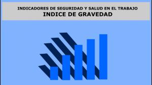 INDICADORES DE SEGURIDAD